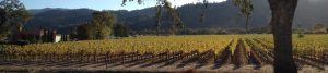 Wine Country in California